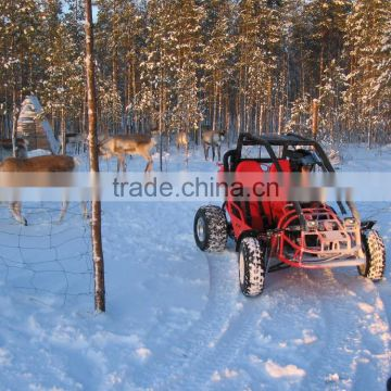 popular EEC 150cc/250cc buggy