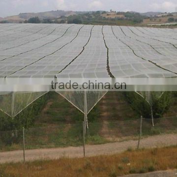HDPE Agriculture Vineyard Plastic Apple Tree Anti Hail Net for Plantations
