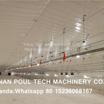 Rwanda Poultry Farm Deep Litter System & Broiler Floor Raising System with Automatic Nipple Drinker System & Feeding Pan Line in Chicken Shed