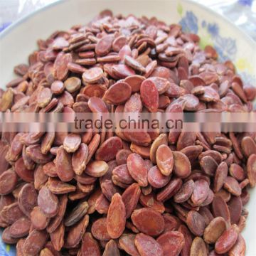 High quality new red hybrid watermelon seeds