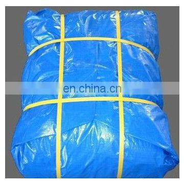 Cheap Poly Tarp Protect Cover, HDPE Blue Tarp