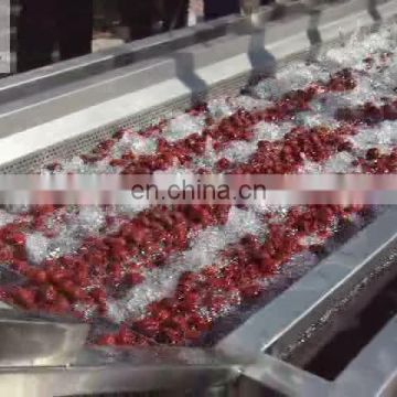 pear mulberry jujube mango washer machine for cleaning vegetable washing machine price