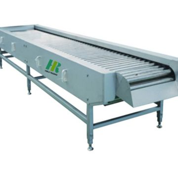 Fruit and vegetable sorting grading machine for oval material