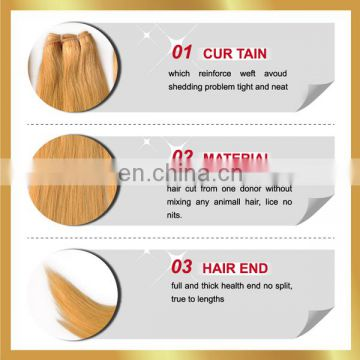 Hot Selling Raw Blonde Natural Virgin Russian Hair Wholesale Accept Paypal Russian Hair Extensions