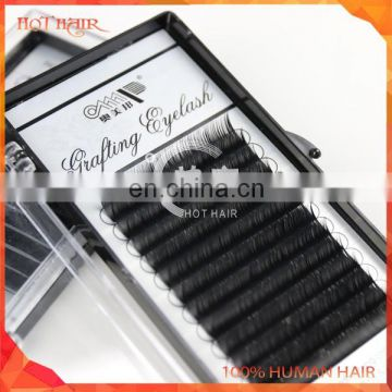 Lash product/false eyelash/natural looking false eye lashes