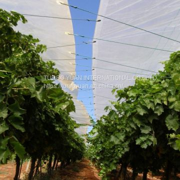 Plastic cover to ensure fruit production and prevent damage from rain, hail with uv protection