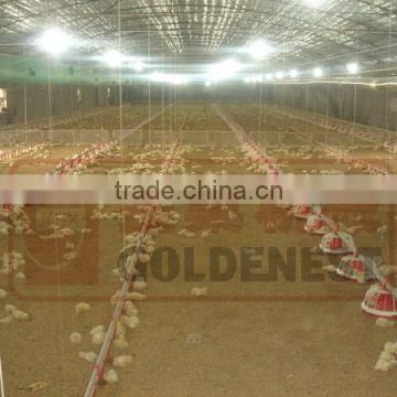^Chicken feeder pan in chicken poultry farming house for broiler design