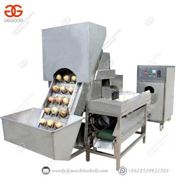 Fruit And Vegetable Processing Line Onion Skin Removing Machine Professional