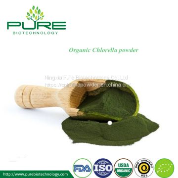 Chlorella Powder for supplement tablet or capsule