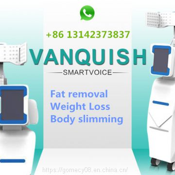 BTL vanquished slimming machine non-contact fat removal weight loss equipment
