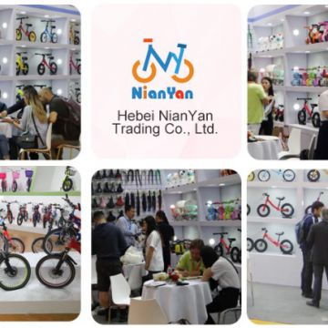 Hebei Nianyan Trading Co.,Ltd.