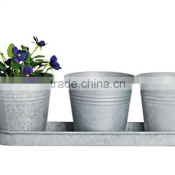 Small zinc pots with tray, Gavanized Flower Planter from Viet Nam