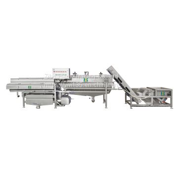 Industrial fruit vegetable cleaning machine