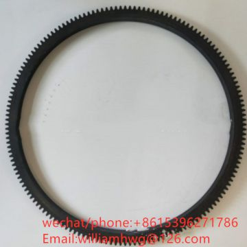 Flywheel Gear 1527913