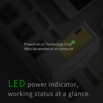 PowerFalcon 45W PD type-c charger / Foldable