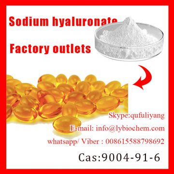 Sodium Hyaluronaye Powder CAS:9004-61-9