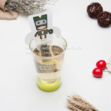 OEM Accepted Cartoon Tea Bag Flower and Fruits Tea Bag