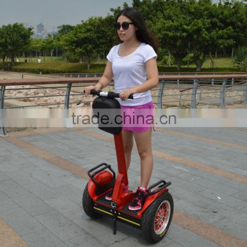 New arrived 2 wheels electric scooter ,electric chariot with golfbag holder