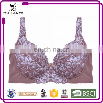 Top Selling Beautiful Hot Lady Lace Sexe / Sexi / Saxi Xxx Sexy Sexy Push Up Bra