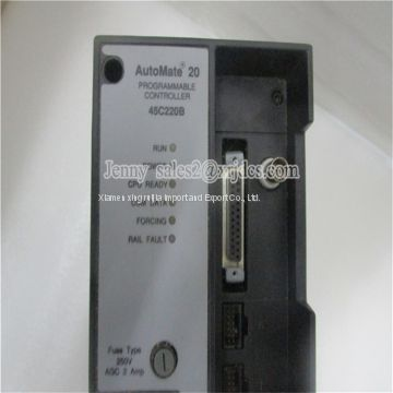 Hot Sale New In Stock RELIANCE 45C220B PLC DCS MODULE