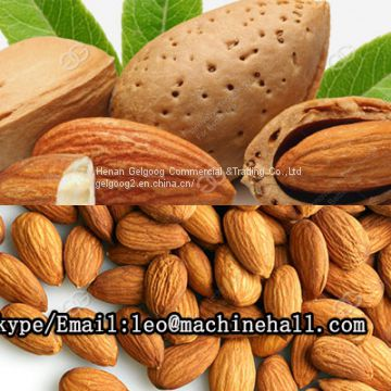 Stainless Steel Almond Shelling Cracking Machine With Factory Price