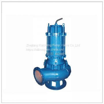 QW Submersible Dirty Water Pump