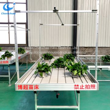 Rolling bench in greenhouse for seedling ebb flow rolling table