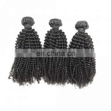Youth Beauty Hair 2017 top quality 9A brazilian virgin human hair weaving in kinky curly style cuticle aligned hair