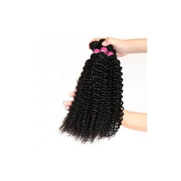 16 18 20 Inch Kinky 10inch Straight Brazilian Curly Human Hair Blonde 10inch - 20inch