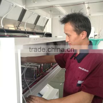 Hefei Large Capacity Cotton Seeds Color Sorter/Sesame seed Color Sorting Machine
