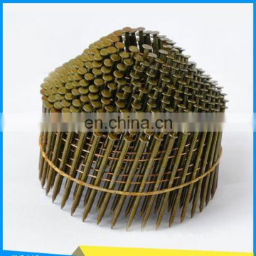 manufacturer of low price Electro galvanized wire stainless steel coil nail