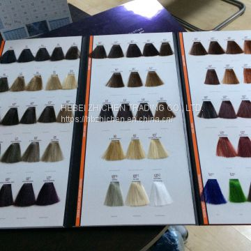 Customized Hair Color Chart Manufacture