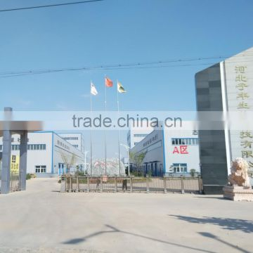 Shijiazhuang Fengyi Biotechnology Co., Ltd.