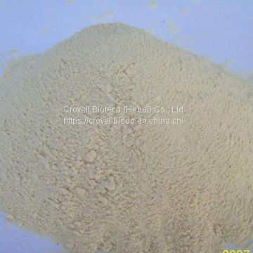 High quality CAS: 16648-44-5 Methyl 3-oxo-2-phenylbutyrate BMK