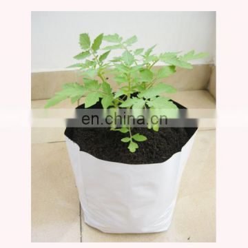 Outdoor Agricultural Inexpensive Poly Recycling Grow Bag