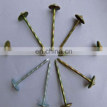 Factory China Good Quality Hot Dipped Electro Galvanized Bwg9-bwg12 Corrugated Roofing Nails