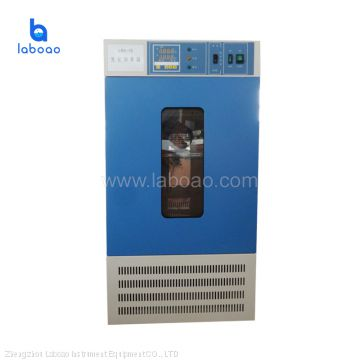 Laboratory bacterial microbial culture mold incubator machine