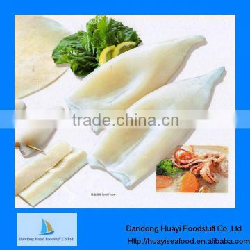 frozen whole round cleaned squid supplier