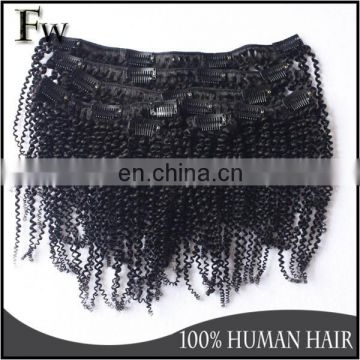 Thick end wet and wavy clip in hair extension clip in hair extension 100% human afro kinky curly clip in human hair extension