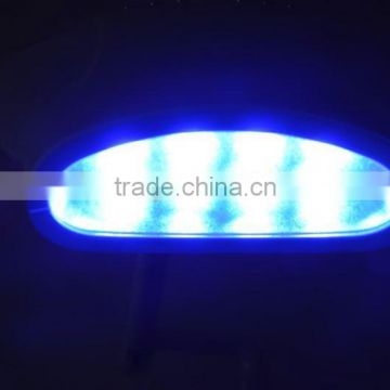 CE Approval Blue Cooling Light LED Light Zoom Teeth Whitening