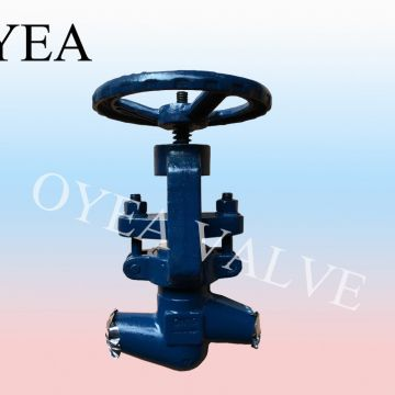 ANSI GB High Pressure Power Station Globe Valve