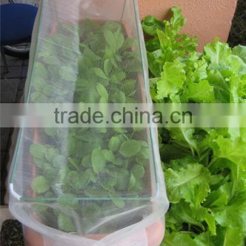 PE insect screen net for organic vegetables