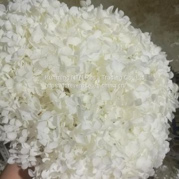 Most Popular Event Flowers Real Touch Hydrangea