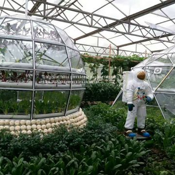 China's intelligent greenhouse foreign trade manufacturer