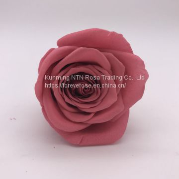 Top quality Long Lasting Roses Real Preserved Roses Wholesale From Kunming Yunnan