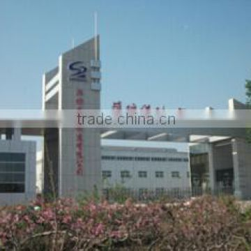 Shengrui Transmission Corporate Limited