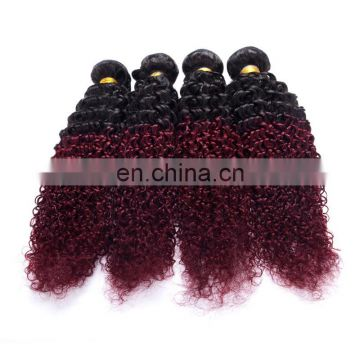 hot sale curly wave ombre color 1b/99J remy weave tangle free wholesale online