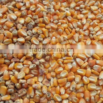 High-quality corn color separating sorter