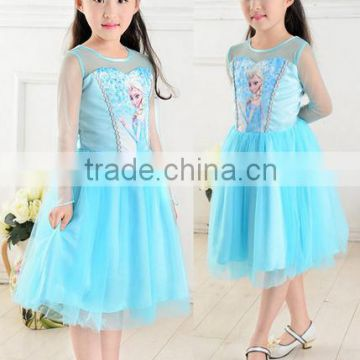 2014 Hot Selling Children's Cloting New Style Girls Frozen Dress Elsa Anna beautiful Dress Fashion princess Dress