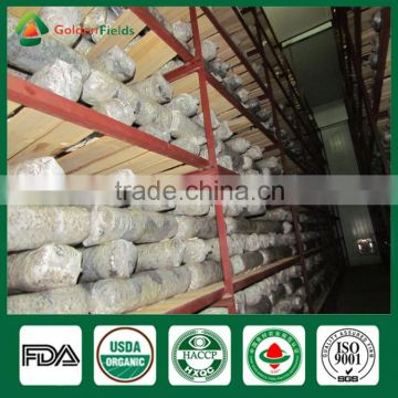 Frozen Food Competitive Price of Mushroom Log Spawn Cultivation for Mushroom Farm Garden Restaurant